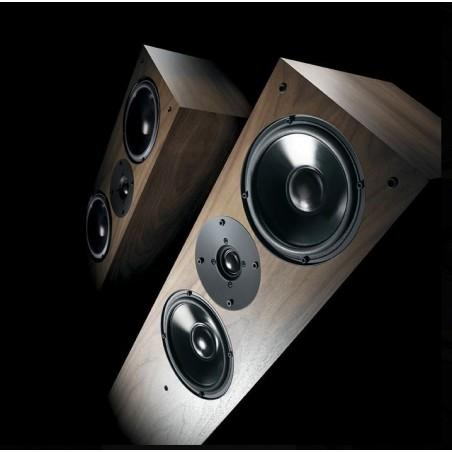 Cambridge Audio CXA61 Amplificador