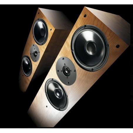 Cayin A-845Pro Amplificador